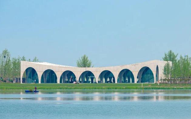 银杏天鹅湖公园